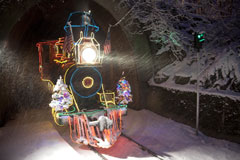 Zoo Lights train