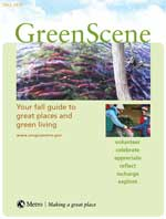 Fall GreenScene