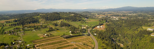 Aerial view of green rolling landscape