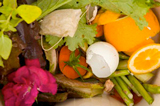 Portland composts food scraps