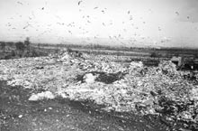 photograph of St. Johns Landfill, 1972