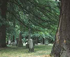 Lone fir Cemetery preserves trees, cultural heritage