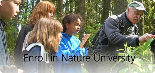 Deadline extended: apply by Dec. 9 to become a volunteer naturalist