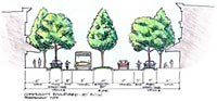 Illustration of street cross section with trees